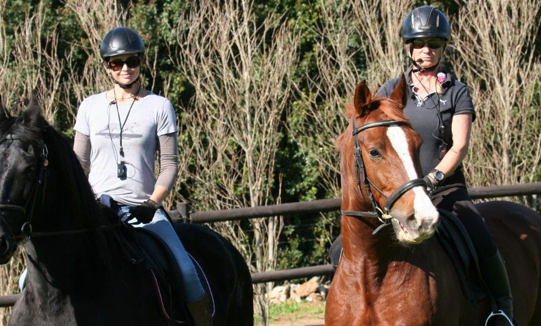 the benefits of using an equestrian wireless training system