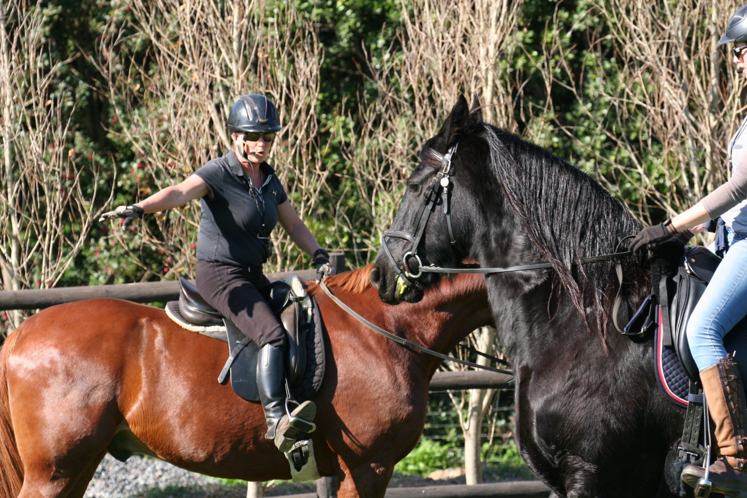 equestrian wireless training system giving instructions